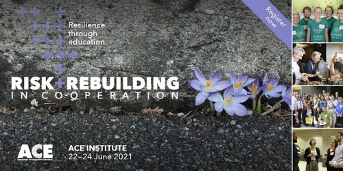 """Image of flowers growing through crack in concrete with text: """"Resilience through recovery. Risk rebuilding in cooperation."""""""