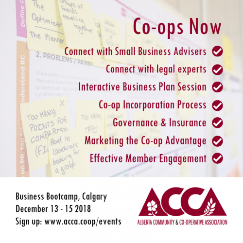 Co-ops Now Business Bootcamp