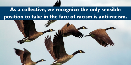 """Image of geese with text saying """"as a collective, we recognize the only sensible position to take in the face of racism is anti-racism"""""""