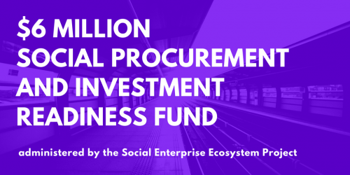 Procurement and Investment Readiness Fund