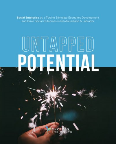 Untapped Potential: Social Enterprise as a Tool to Stimulate Economic Development and Drive Social Outcomes in Newfoundland & Labrador