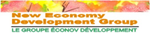 New Economy Development Group Inc. logo