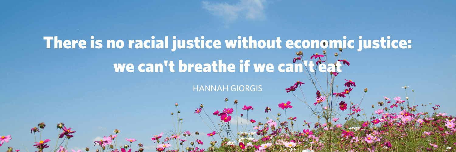 "Image of pink flowers with a blue sky above with the following text: ""There is no racial justice without economic: we can't breathe if we can't eat"" Hannah Giorgis"